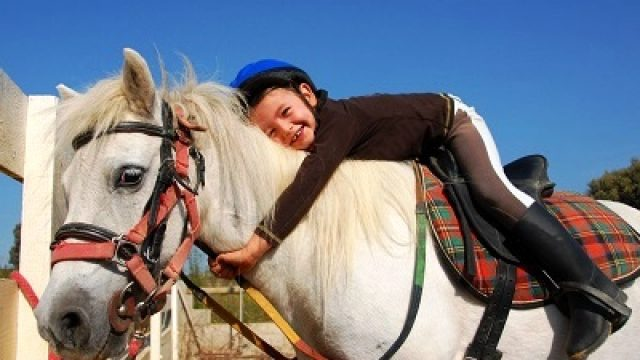 <strong>Special Offer:</strong> Offerta Cavallo e Natura