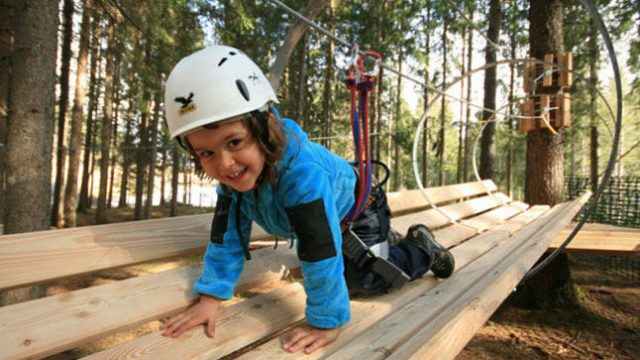 <strong>Special Offer:</strong> offer Adventure park